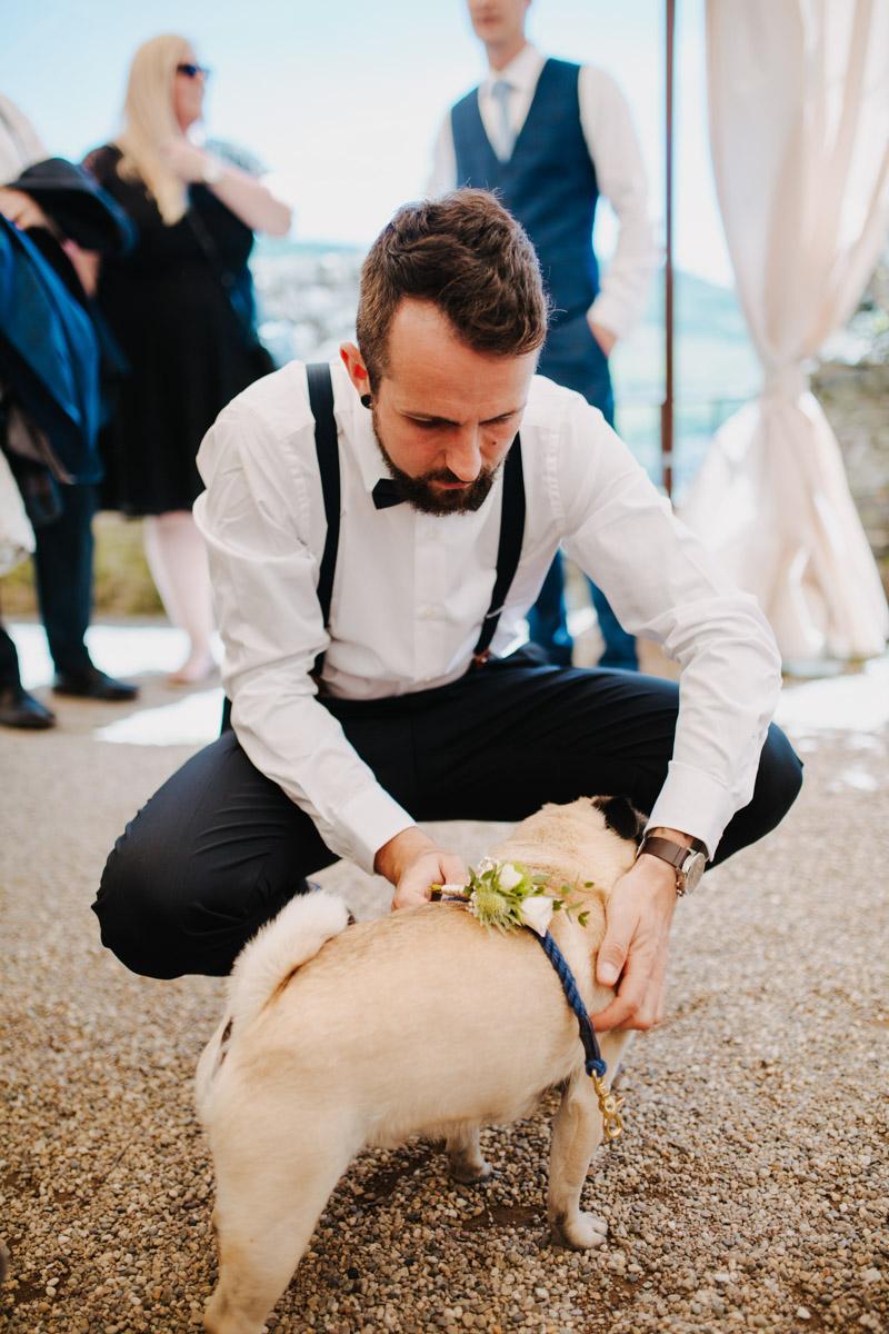 Bräutigam streichelt Hund
